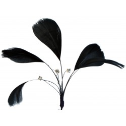 Tweetie Feather Accents - Black