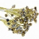 4mm Diamante Branch - Gold  (3bunches x 6 stems per bag)