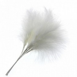 Fluffy Feathers - White (24cm Long, 6pcs per pk)