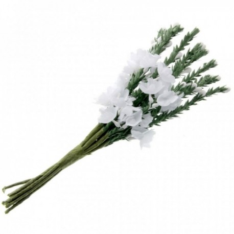 Heather - White (6 bunches x 12 stems)