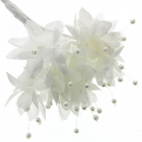 Pearled Baby's Breath - Cream (6 bunches x 12 stems)