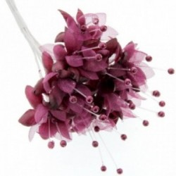 Pearled Baby's Breath - Burgundy (6 bunches x 12 stems)