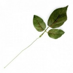 Rose Leaf Pick - Green (25cm Height, 12pcs per pk)