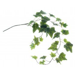 Ivy Spray - Green (65cm Long)