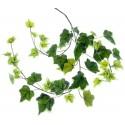 Ivy Spray - Variegated (65cm Long)