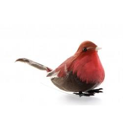 Mini Robins - Natural (12 per pk)