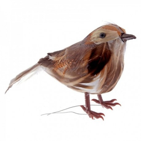 Feathered Thrush - Natural (13cm Long, 6pcs per pk)
