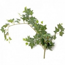 Ivy Bush - Green (85cm Long)