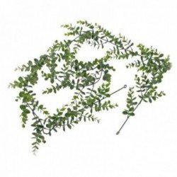 Eucalyptus Garland - Green & Grey