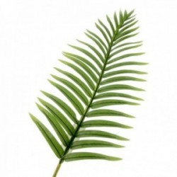 Real Touch Fern Palm Leaf - Green (108cm long)