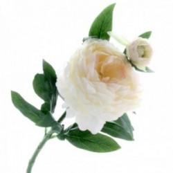 Peony - Cream/Pink (1 flower & 1 bud, 64cm long)