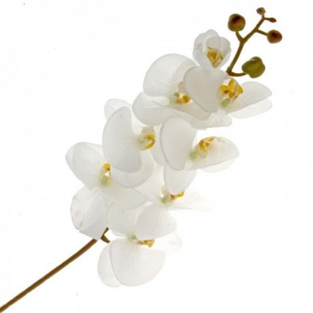Real Touch Phalaenopsis Orchid - Cream (8 heads, 99cm long)