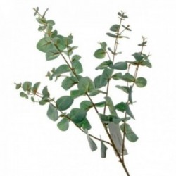 Silk Spiral Eucalyptus Spray - Green (130cm long)