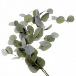 Silk Populus Eucalyptus Spray - Green (110cm long)