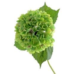 Single Hydrangea - Green (19cm diameter, 82cm long)