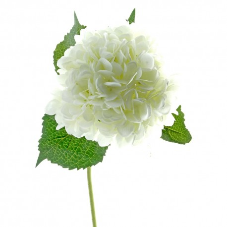 Single Hydrangea - White (19cm diameter, 82cm long)