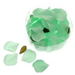 Rose Petal Box - Mint Green (164pcs per pk)