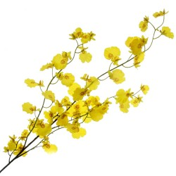 Dancing Lady Orchid - Yellow (90cm long)