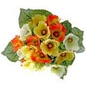 Poppy Bunch - Orange, Yellow & Cream (17 Heads)
