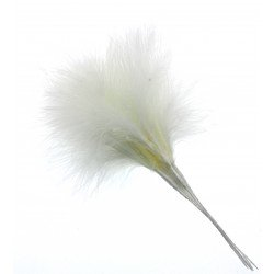 Fluffy Feathers - Cream (24cm Long, 6pcs per pk)
