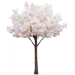 Cherry Blossom Tree - Pink (1.8m tall)