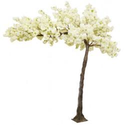 Canopy Cherry Blossom Tree - Cream/Ivory (3.2m tall)