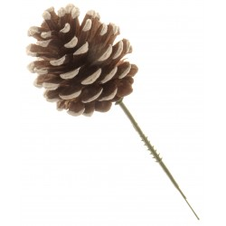 5cm Pine Cone Picks - White & Natural (5cm pine cone on a 13cm pick, 12 pcs per pk)