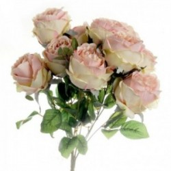 Peony Rose Bush - Pink/Cream (10 heads)