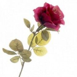 Rose - Burgundy (70cm long)