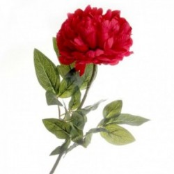 Large Peony - Red (70cm long)