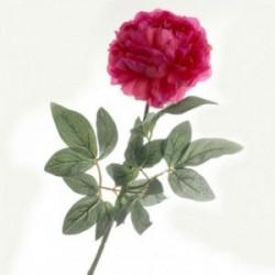 Large Peony - Hot Pink (70cm long)