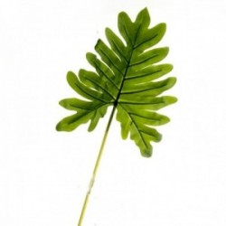 Real Touch Philodendron Leaf - Green (104cm long)