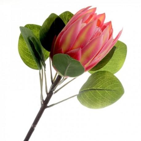 Protea - Pink (65cm long)