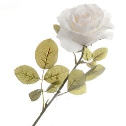 Rose - Cream (70cm long)