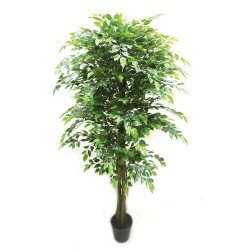 Real Touch Potted Ficus Tree - Natural  (180cm tall)
