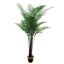 Parlour Palm Tree with Pot - Natural (180cm tall, 11 fronds)