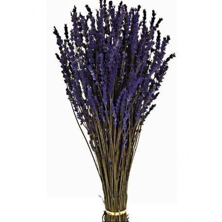 Preserved Lavender - Purple (150g)