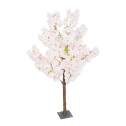 Cherry Blossom Tree - Pink (1.4m tall)
