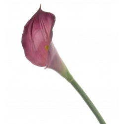 Real Touch Calla Lily - Dark Purple (68cm long)