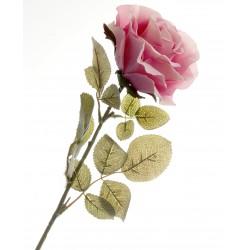 Rose - Dusty Pink (70cm long)