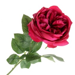 Garden Rose - Cerise (50cm long)