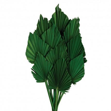 Palm Spear - Green (10pcs per pk)