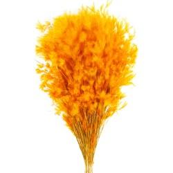 Pluminha - Orange (70cm tall, 100g)