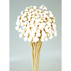 Button Flowers - White (45cm long, 100g)