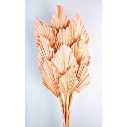 Palm Spear - Peach (10pcs per pk)
