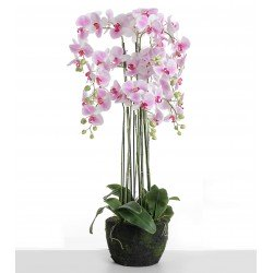 Real Touch Artificial Orchids In Moss Pot - Purple/White (110cm tall, 9 stems)