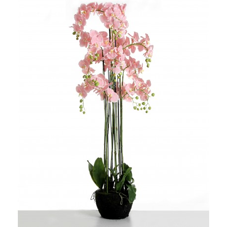 Real Touch Artificial Orchids In Moss Pot - Pink (150cm tall, 13 stems)
