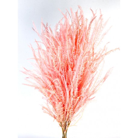 Preserved Three Fern - Pink (45cm tall, 50g per pk)