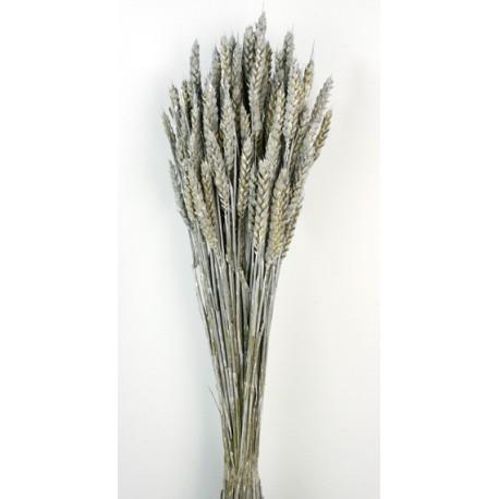 Wheat - Dusty Pink (80cm tall, 200g)