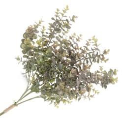 Eucalyptus Bundle - Green/Brown (3 stems, 64cm long)